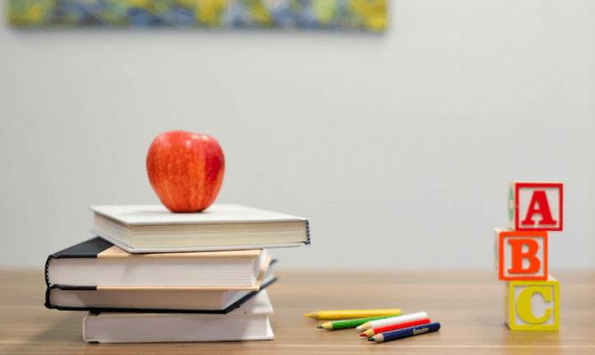 concursos professor como organizar o seu estudo